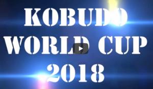 Kobudo World CUP